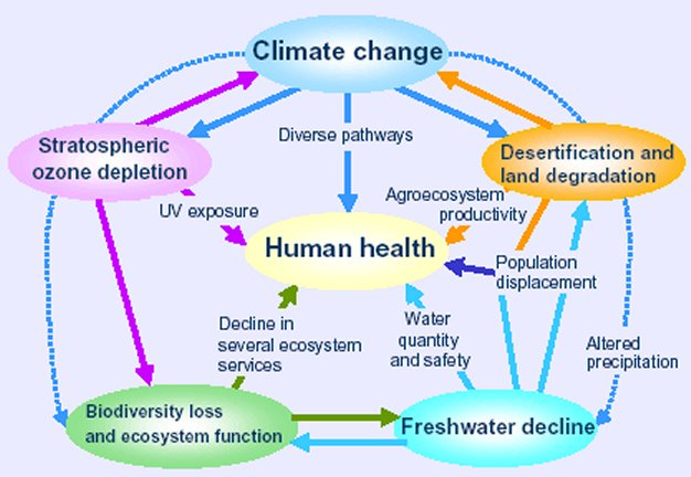 WHO-climate-change-chart__1_