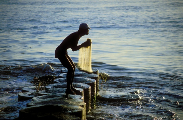 Bali gold fisher R3b