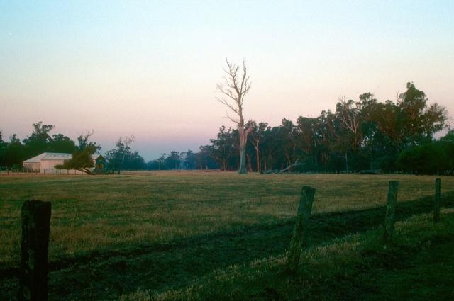 Farm dusk G41