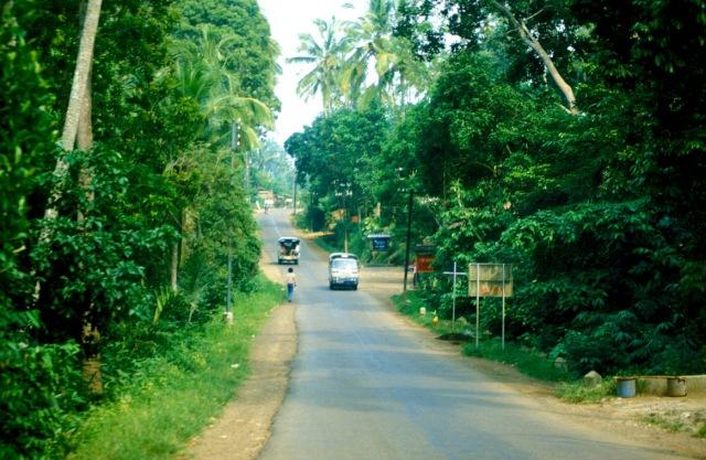 ubud-road-w161