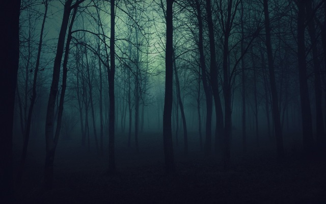 wood_trees_gloomy_fog_haze_darkness_50175_2560x1600_1