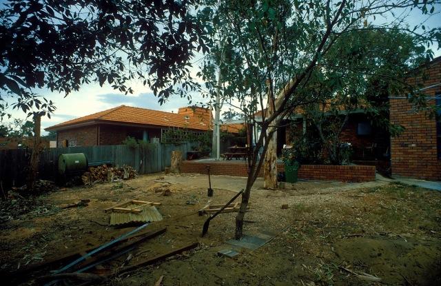 Back yard 87g