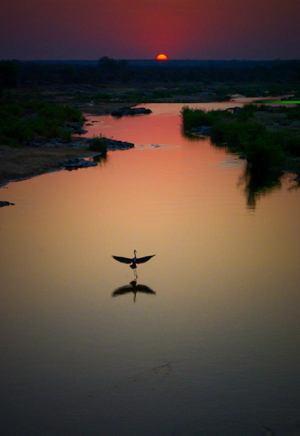 Sunset glide