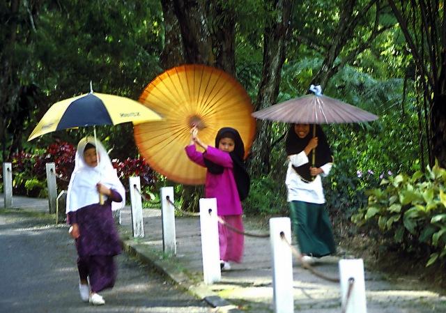 Umbrella girls 89